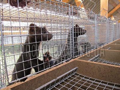 Проволока для производства клеток для животных